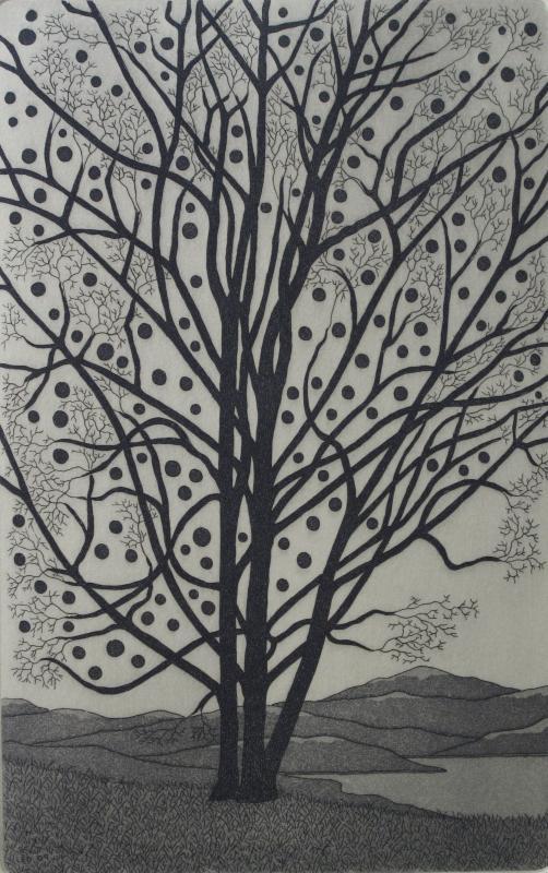 The Artfield Press Gallery Tree Etchings